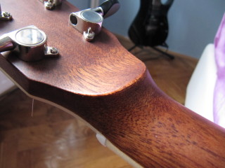 cort_as_e4_headstock_back