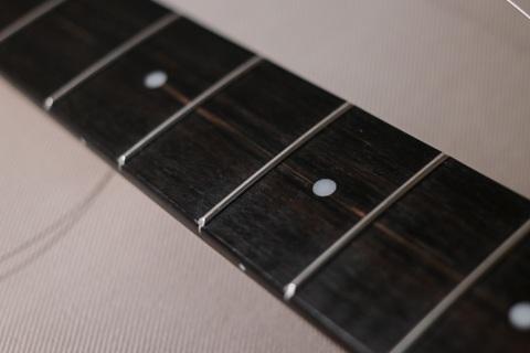 Ebony Fingerboard